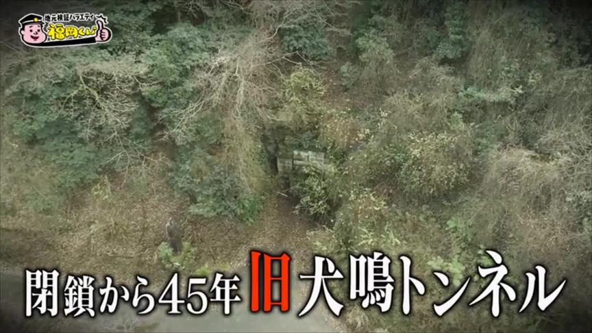福岡 犬鳴 村