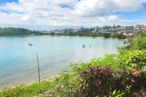 TABIPPO ニューカレドニア