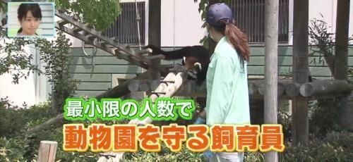 バリはやッ!ZIP! 福岡市動物園