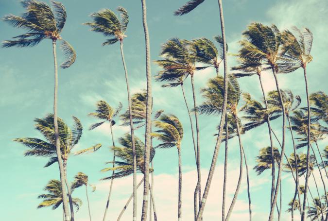 「風の時代」