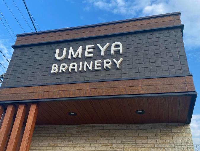 UMEYA BRAINERY