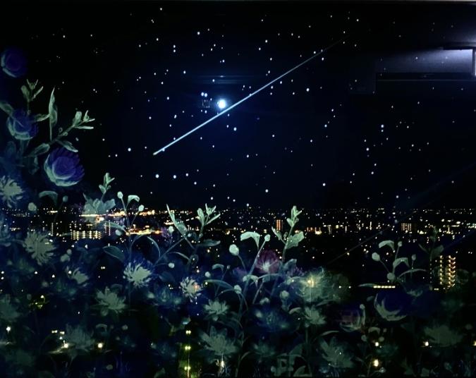 佐賀県庁 佐賀県×ネイキッド 星空の庭園 Star Garden Show 星空