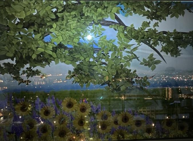 佐賀県庁 佐賀県×ネイキッド 星空の庭園 Star Garden Show ひまわり