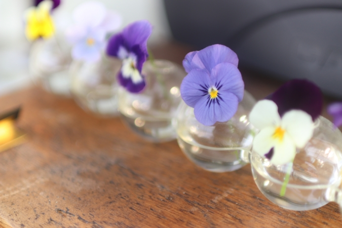 Chou fleur 花瓶