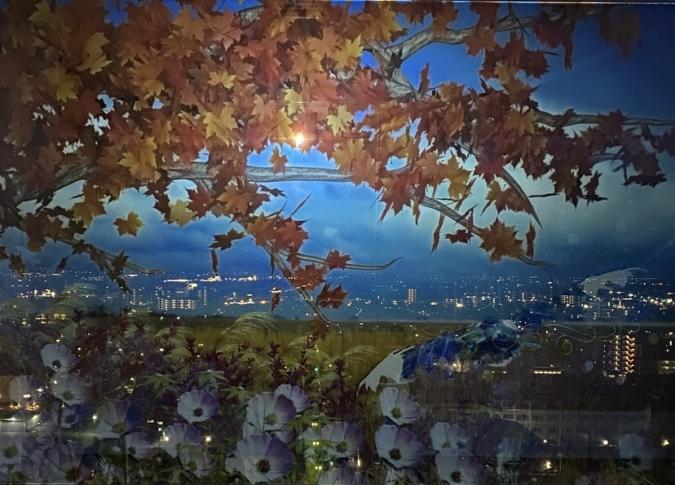 佐賀県庁 佐賀県×ネイキッド 星空の庭園 Star Garden Show 紅葉とコスモス