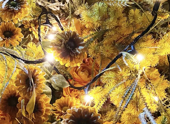 佐賀県庁 佐賀県×ネイキッド 星空の庭園 Star Garden Show 花