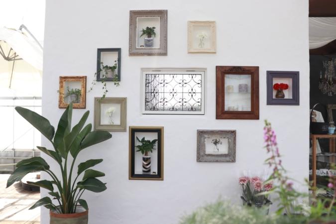 Chou fleur 壁のフレーム