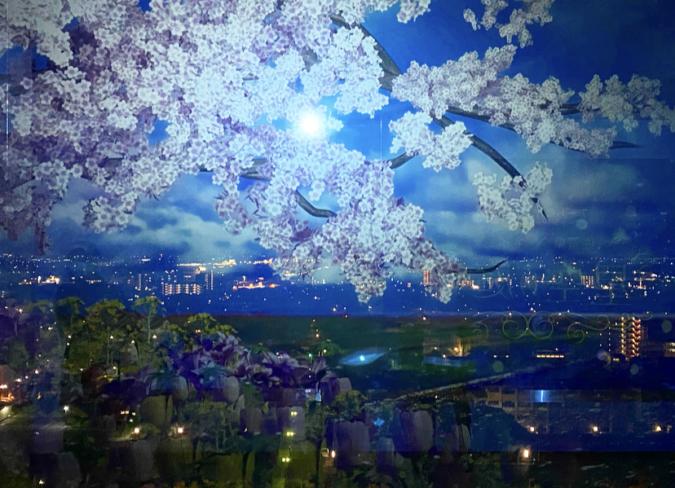 佐賀県庁 佐賀県×ネイキッド 星空の庭園 Star Garden Show 桜