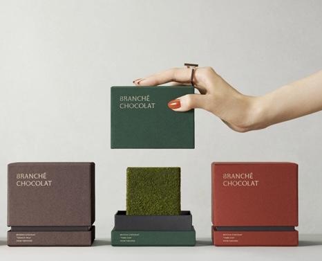 抹茶のカレ・オ・ショコラ ボックス イメージ