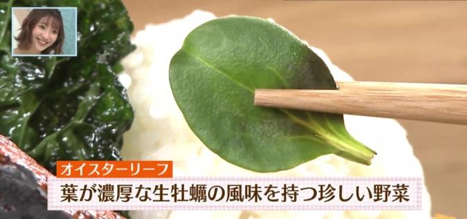 FREEMAN dining(フリーマンダイニング) 野菜プレート オイスターリーフ