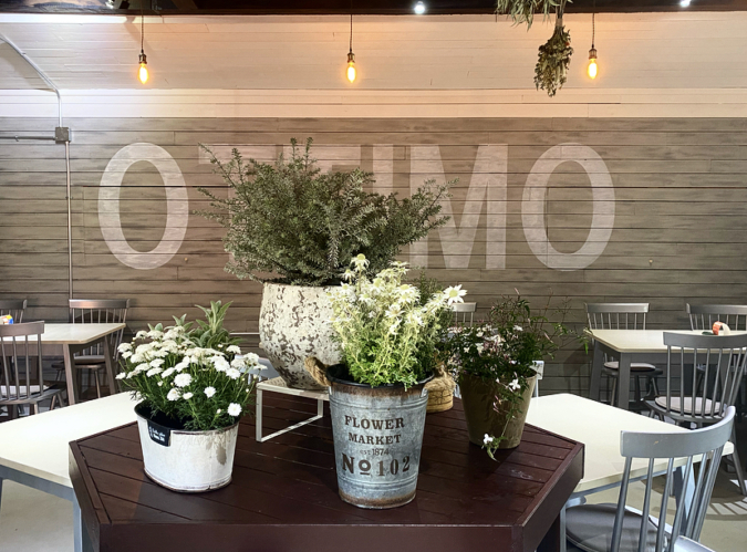 ottimo(オッティモ)焼き菓子カフェ  植物