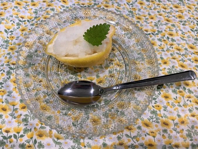 自家製レモンシャーベット