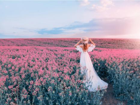 画像:Shutterstock