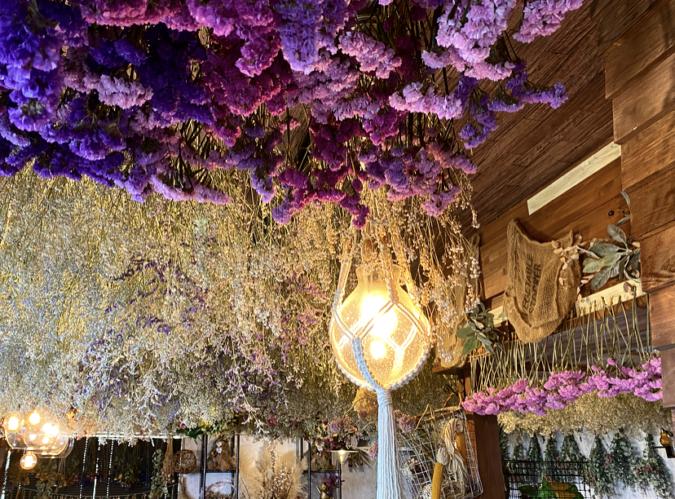 花カフェKOKIA(コキア) 天井から吊るされたドライフラワー