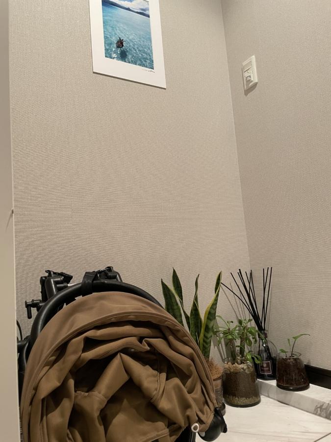 サンセベリアほか玄関の観葉植物