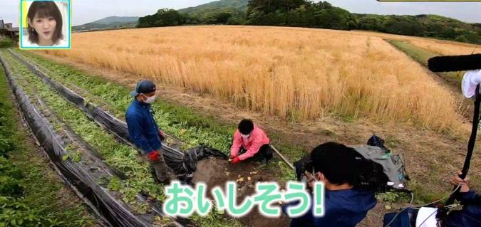 TOYO'Sキッチン おき農園で新じゃが収穫