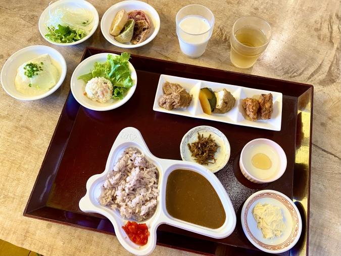 『五ヶ山豆腐』五ヶ山ダムカレー御膳