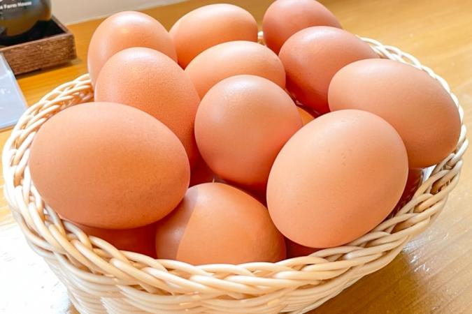 糸島ファームハウスUOVO(ウォーヴォ) 卵かけご飯用のだし醤油
