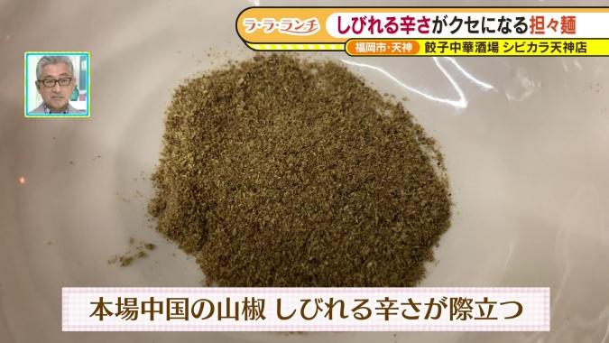 四川風トリプルパイコー坦々麺 山椒