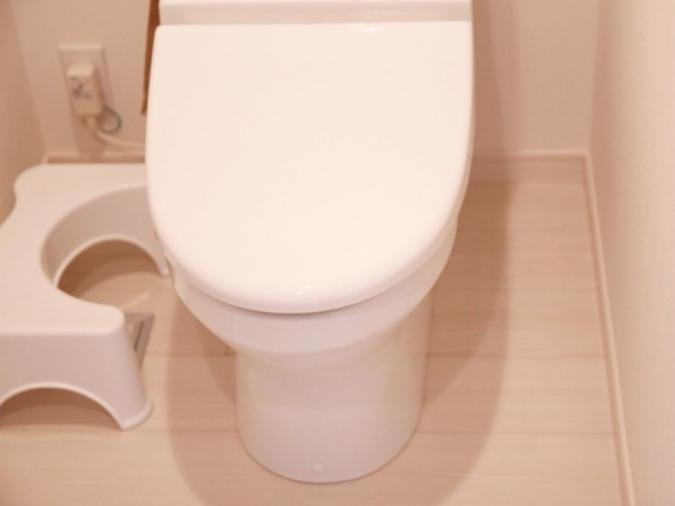 カバー類はトイレ掃除の時短のために手放していいモノ